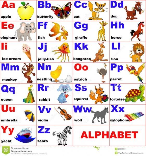 Animais Coloc Na Letra Do Alfabeto Ilustração Do Vetor