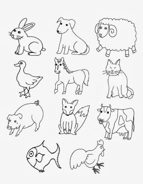 Animais Domesticos Para Colorir