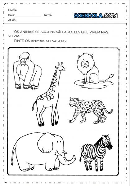 Atividades Sobre Animais