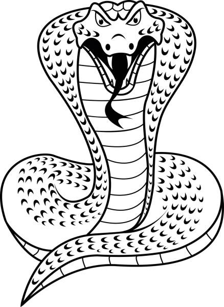 Cobras Desenho Clipart Images Gallery For Free Download