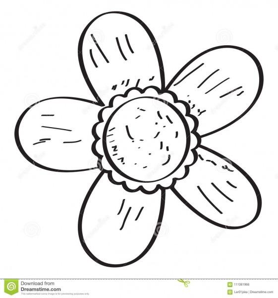 Desenho De Uma Flor Ilustração Do Vetor  Ilustração De Floral