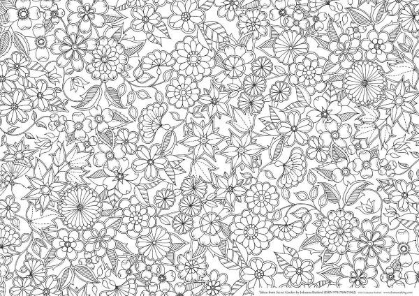 Desenhos Do Livro Jardim Secreto Para Colorir