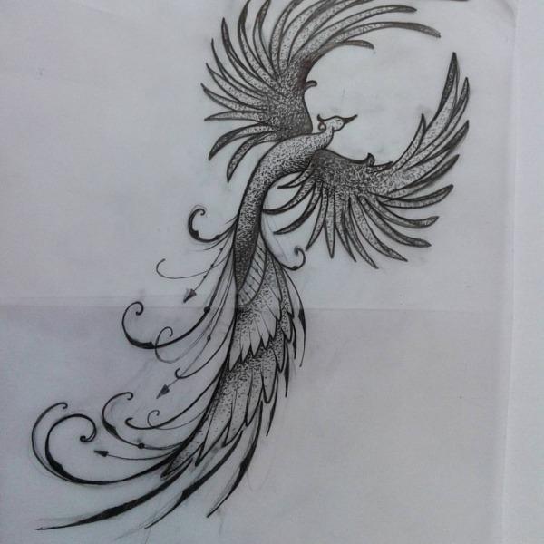 Ana Drechsler Tattoo — Desenho Criado Para Cliente   Fenix