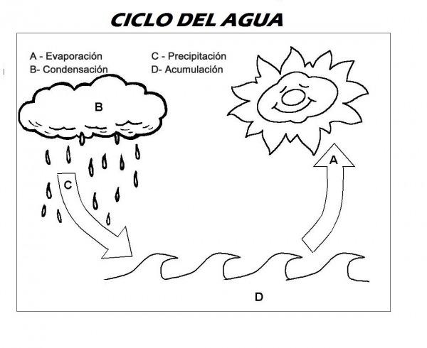 Fichas Y Actividades Para Enseñar El Ciclo Del Agua