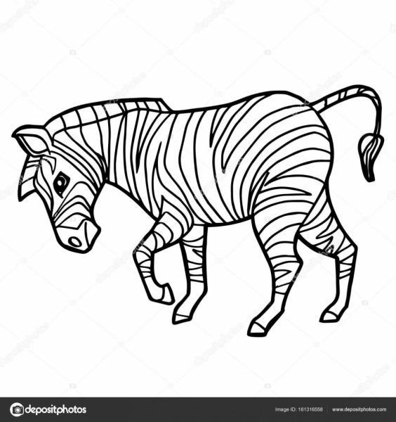 Desenhos Animados Zebra Bonito Colorir Vetor De Página  — Vetores
