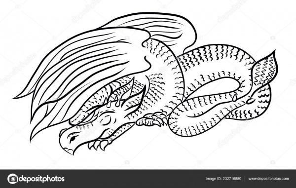 Arte Linha Desenho Dragão Para Colorir Imprimir Nas Roupas — Stock