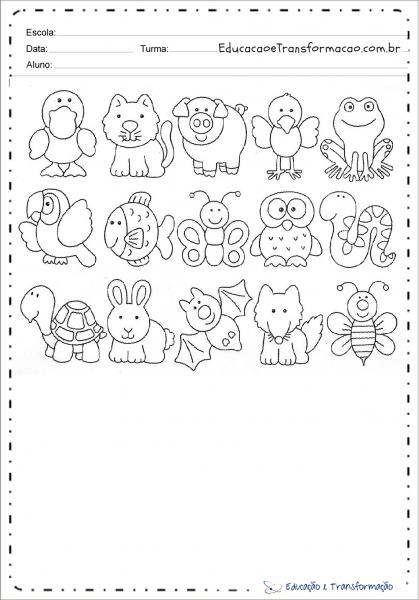 Desenho De Animais Para Colorir E Imprimir – Educação E Transformação