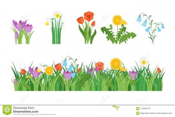 Flores Do Jardim Dos Desenhos Animados E Grupo De Elemento Vetor