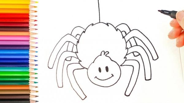Como Desenhar Uma Aranha
