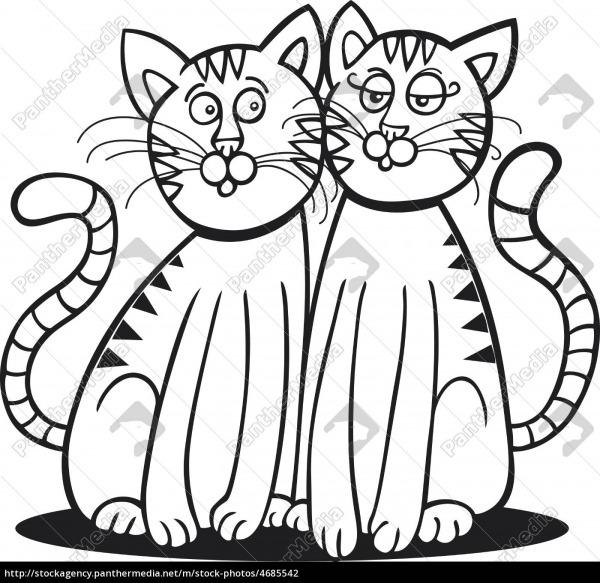 Dois Gatos Para Colorir Livro