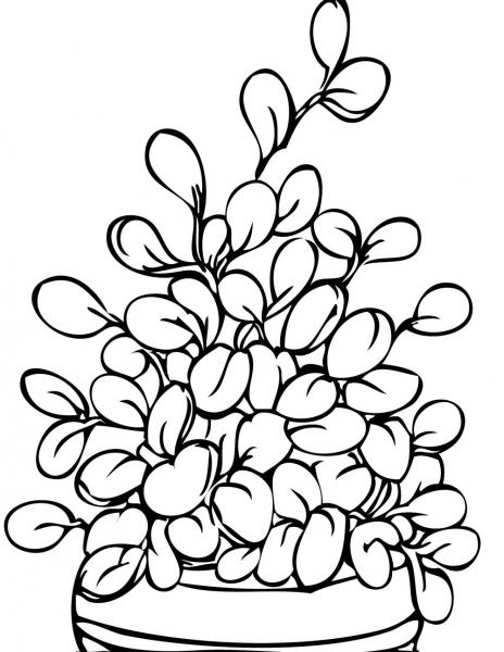 Colorir E Pintar Lindos Desenhos De Plantas Arvores E Flores
