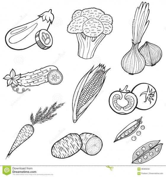 Coleção Do Alimento Dos Vegetais