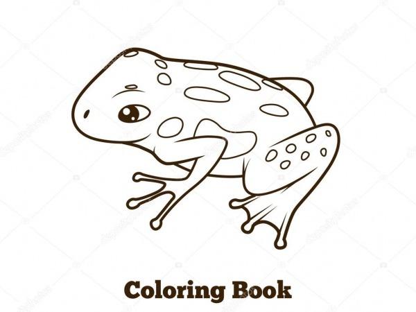 Desenho De Sapo Ilustração Vetorial De Livro De Colorir — Vetores