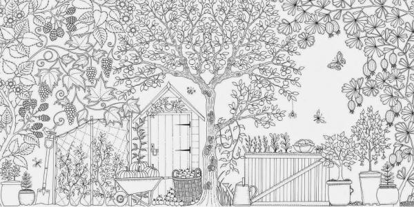 Desenho De Quintal De Casa Para Adultos Para Colorir