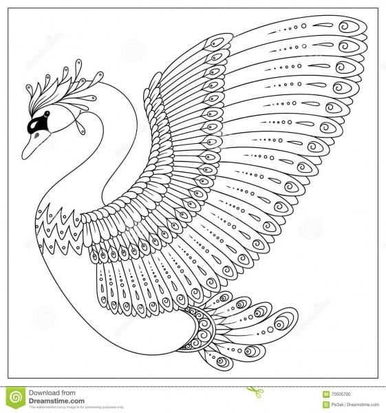 Cisne Do Zentangle Do Desenho Para A Página Colorindo Ilustração
