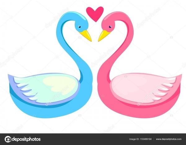 Casal De Cisne Desenho Apaixonado — Vetor De Stock © Alsoush