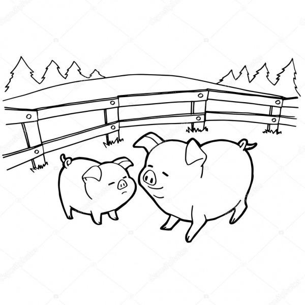 Páginas De Porco Dos Desenhos Animados Para Colorir Vector — Vetor