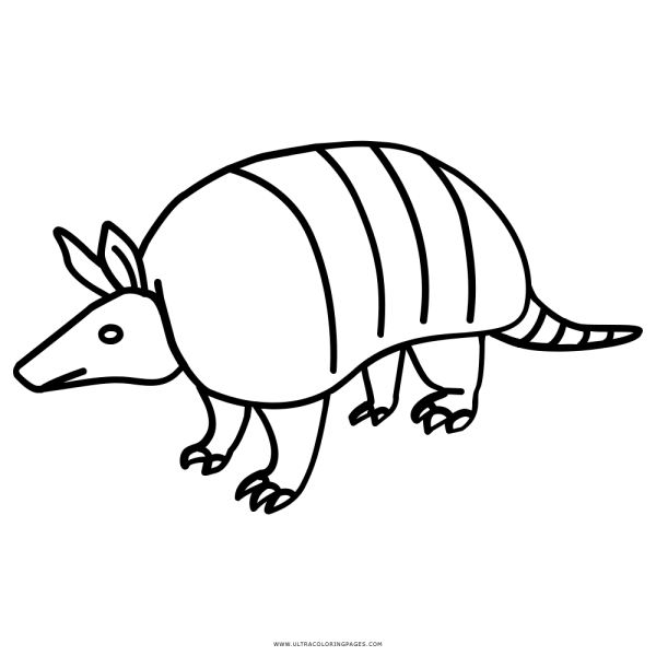 Lagarto Tatu Clipart Images Gallery For Free Download