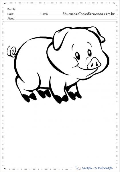 Desenhos De Porco Para Colorir E Imprimir – Educação E Transformação