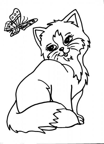 Desenho De Gatinha E Borboleta Para Colorir
