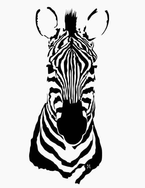 Zebra  Dibujo  Sabana