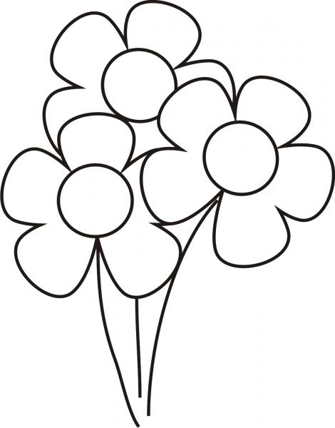 Pz C  Flores Para Colorir
