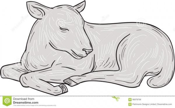 Desenho Do Sono Do Cordeiro Ilustração Do Vetor