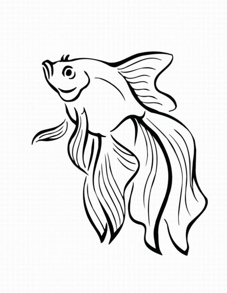 Desenhos Para Pintar De Peixes  Desenhos Para Pintar De Peixes