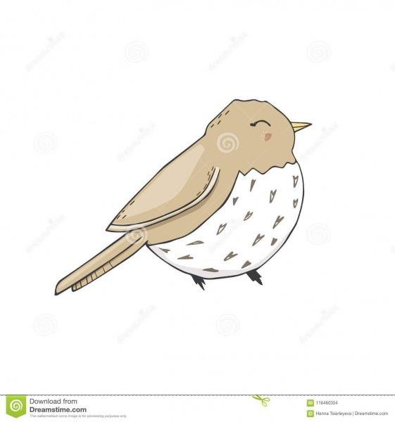 Do Pardal Das Aves Canoras Da Ilustração Do Cantor Do Desenho Do