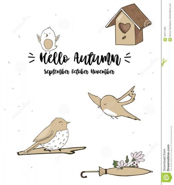 Dos Pardais Das Aves Canoras Da Ilustração Do Cantor Do Desenho Do