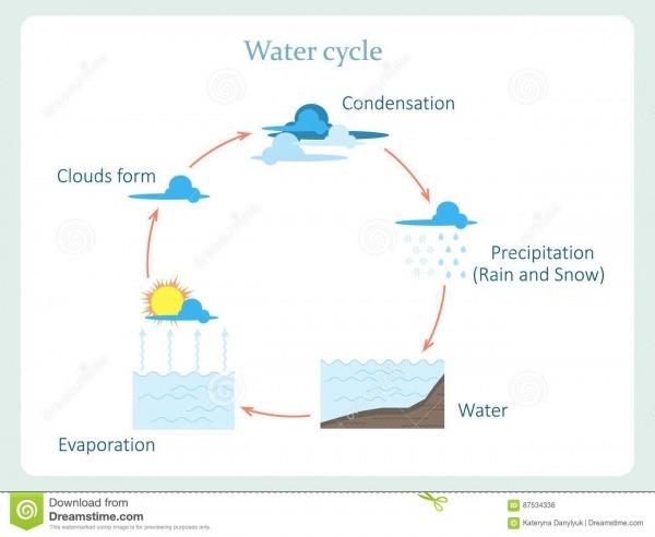 Esquema Del Ciclo Del Agua Para La Educación De Los Niños