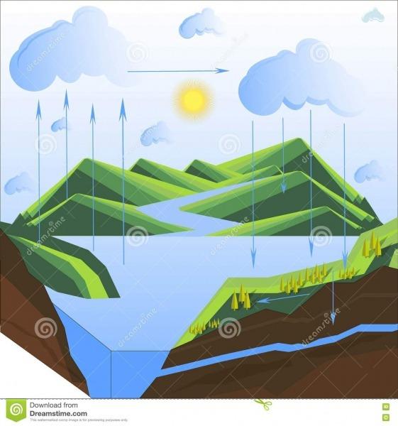 Esquema Do Ciclo Da água Na Natureza Ilustração Do Vetor