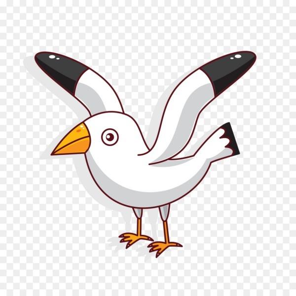 Coruja, Aves, Desenho Png Transparente Grátis
