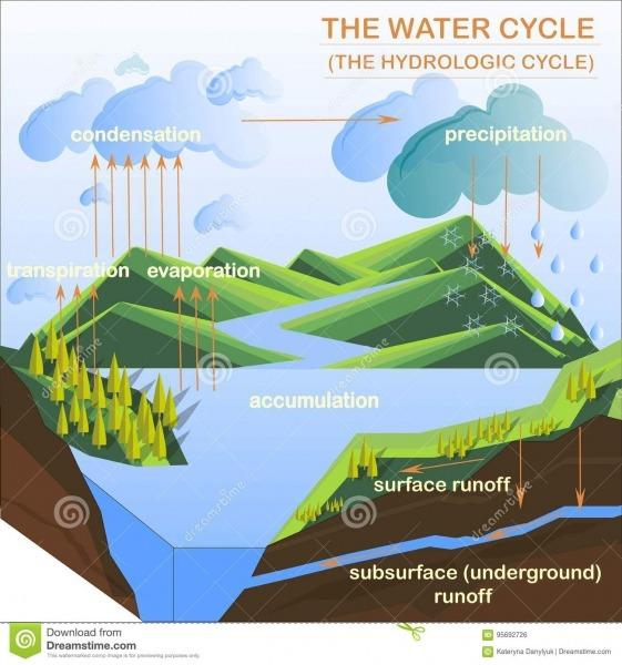 O Esquema Do Ciclo Da água, Planos Projeta A Ilustração Do Vetor