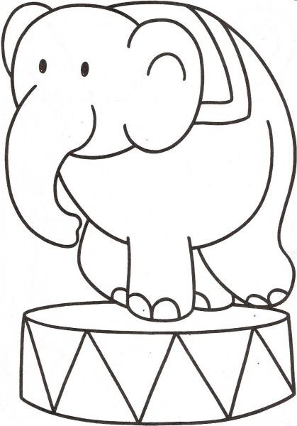 Desenhos De Animais Selvagens Para Colorir E Imprimir