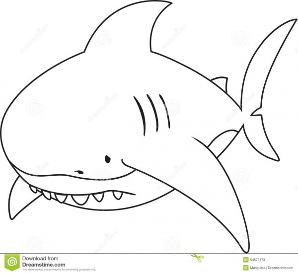 Grande Tubarão Branco De Vista Triste Ilustração Do Vetor