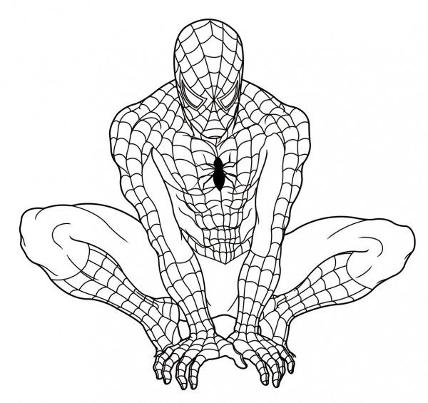 Desenhos Para Colorir Do Homem Aranha Preto