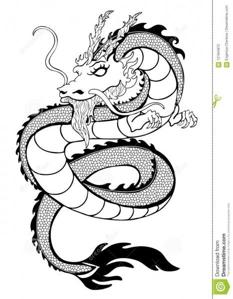 Coloração Do Dragão, Desenho Preto E Branco Do Esboço Decorativo