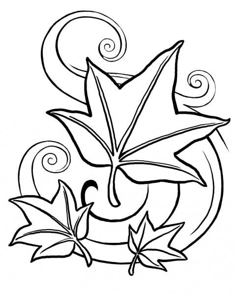 Desenho De Folhas E Do Outono Para Colorir